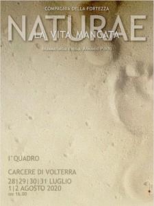 foto_pagina_naturae_carcere